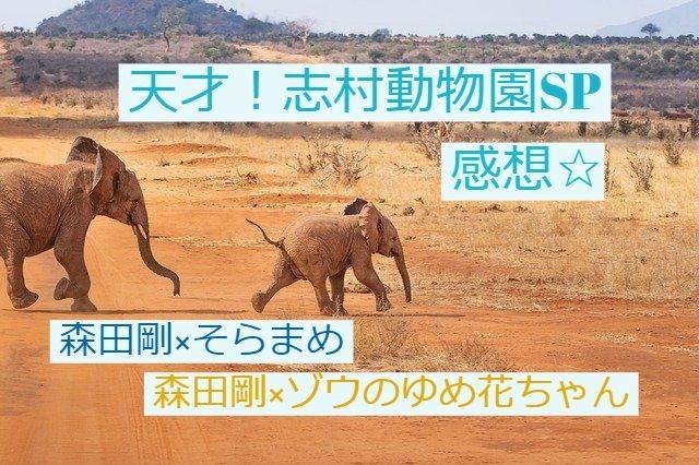 森田剛@志村動物園 感想