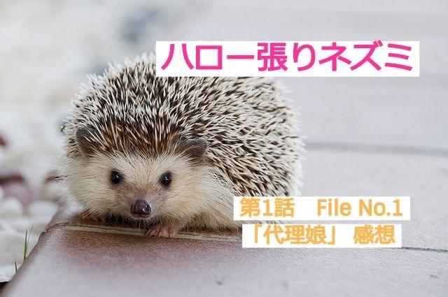 ハロネズFile No.1感想
