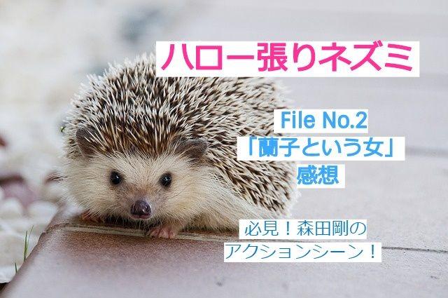 ハロネズFile No.2感想